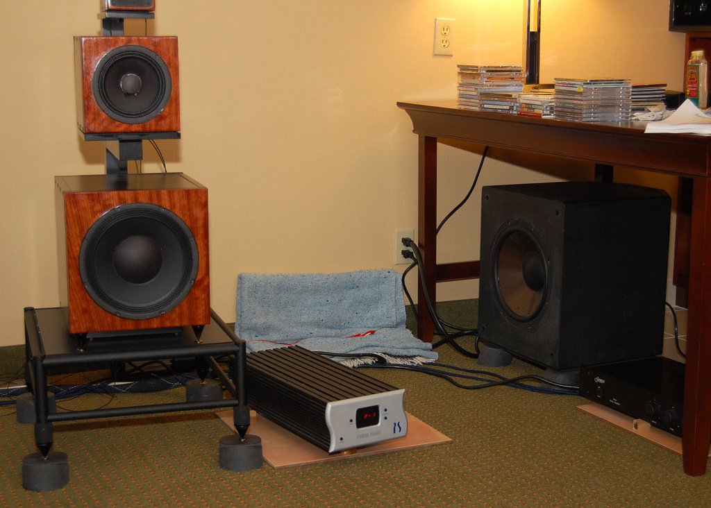 http://lonestaraudiofest.com/2009/Photos/JumpingCactus_03.jpg
