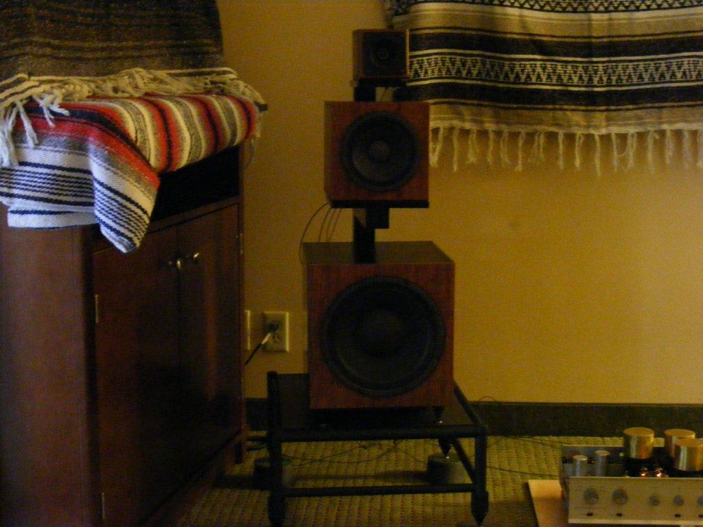 http://lonestaraudiofest.com/2009/Photos/JumpingCactus_04.jpg